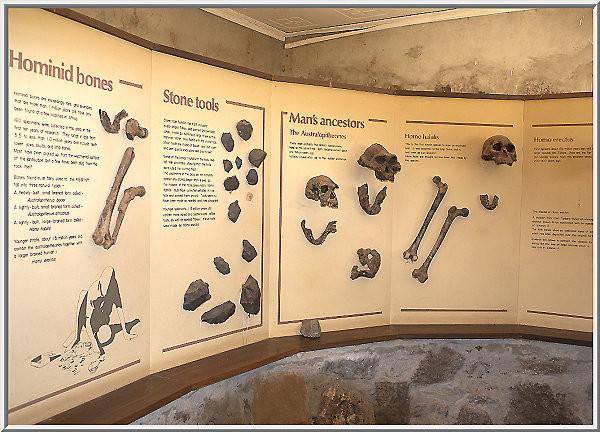 Museo Koobi Fora