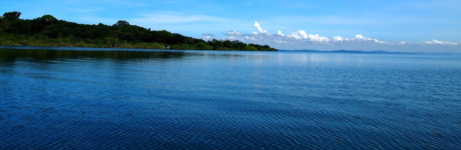 Pinapple Island Lake Victoria Uganda