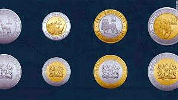 Le nuove monete in circolazione