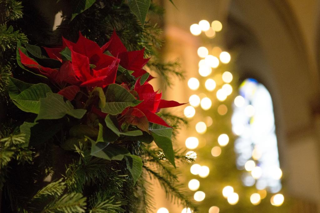 Kirchen bleiben Weihnachten geöffnet