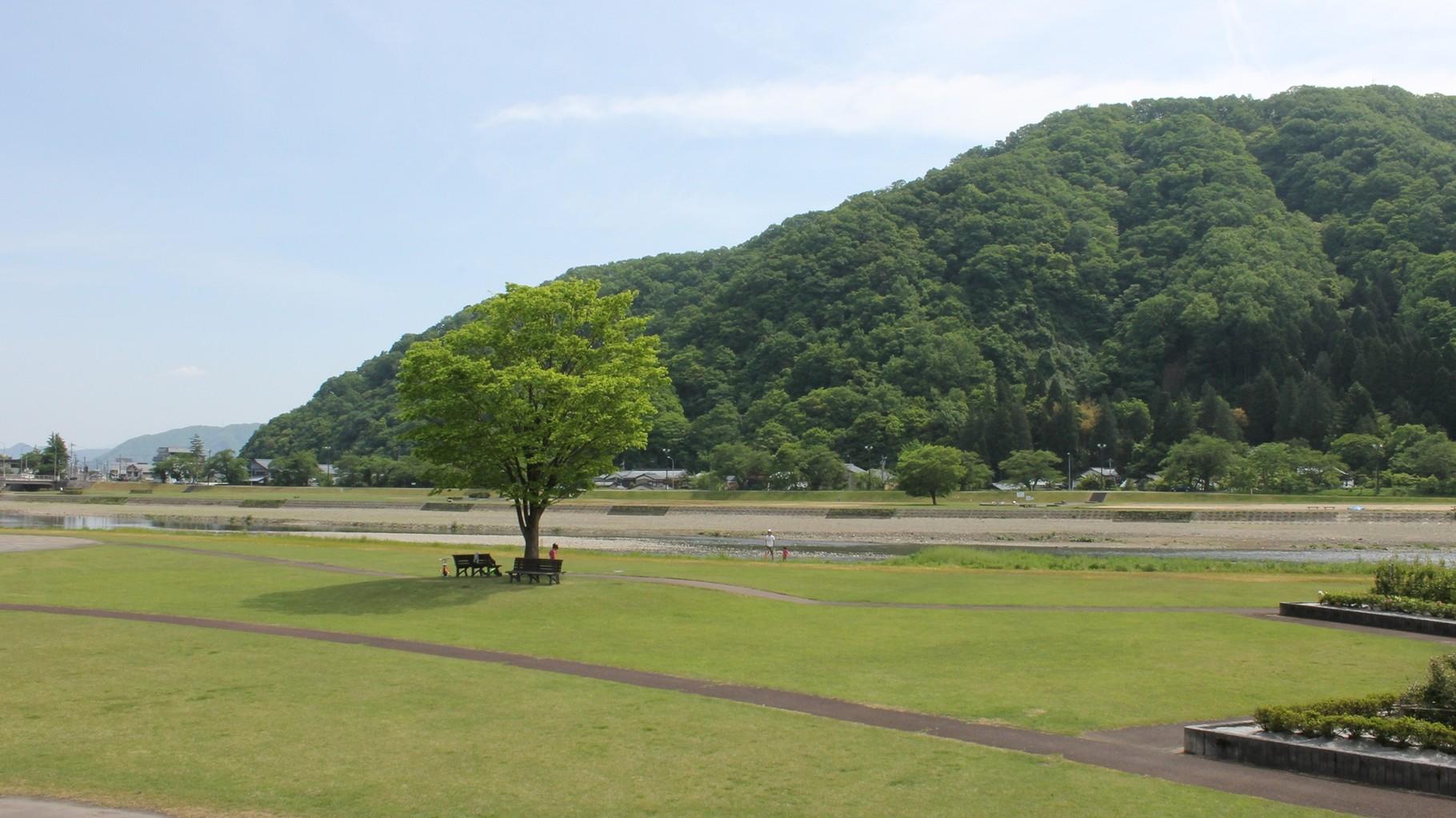 (夏) 住宅近くの日野川緑地公園と村国山