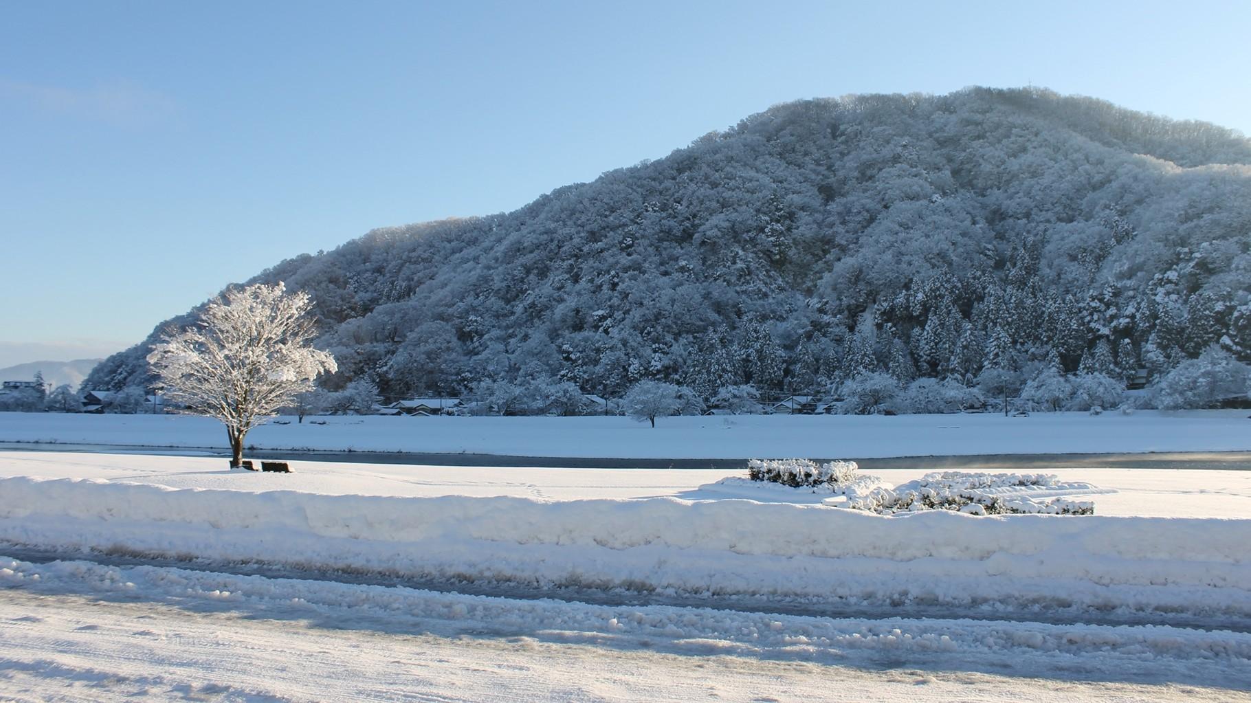 (冬) 住宅近くの日野川緑地公園と村国山