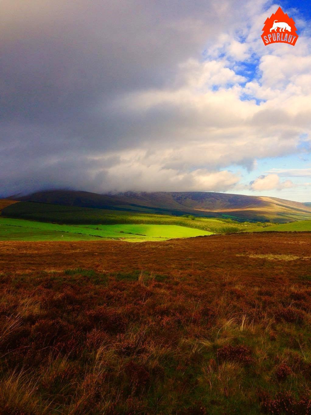 Intensive Farben sind typisch für die irische Landschaft