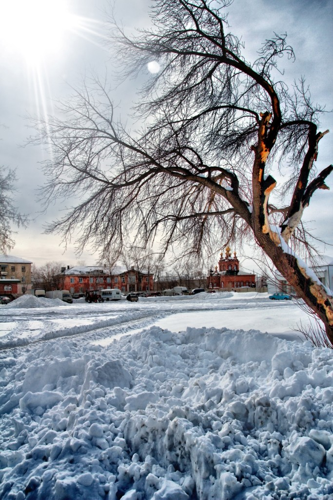 Сарапулов Александр, Челябинская область, г. Южноуральск, РПК Золотой город, Дерево