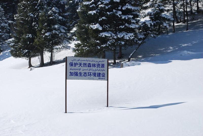 le bilinguisme au Xinjiang, une aide précieuse
