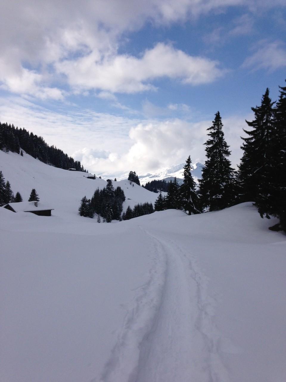 Dutjer Alp GR 2032m ü. M. (17. Februar 2013)