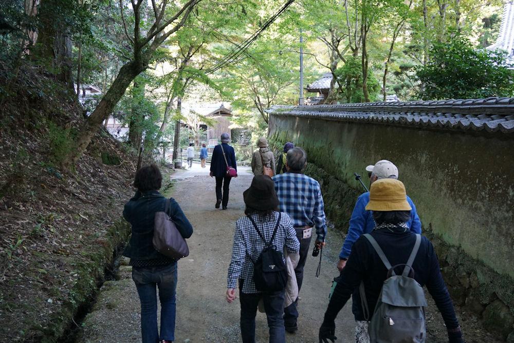 素晴らしいお天気に恵まれた美しい姫路でした。