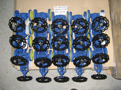 Globe Valves for Steam Lines
