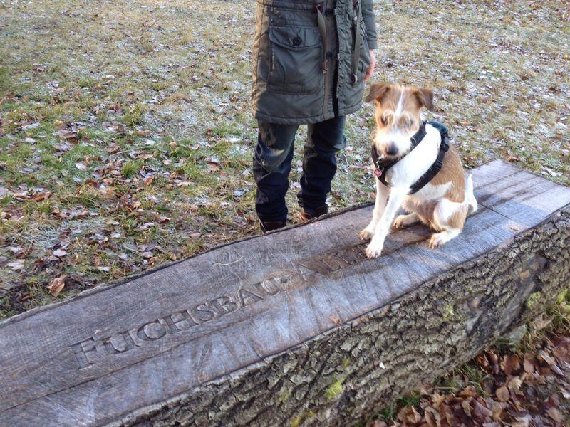 Anno auf den Spuren der Fuchsbau Allee