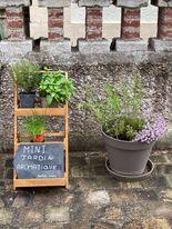 Mini jardin aromatique pour vos barbecues