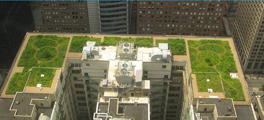 Las cubiertas verdes pueden reducir hasta en un 50% el consumo energetico