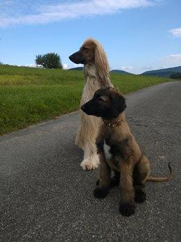 Yaron und sein neuer Freund Darkhan