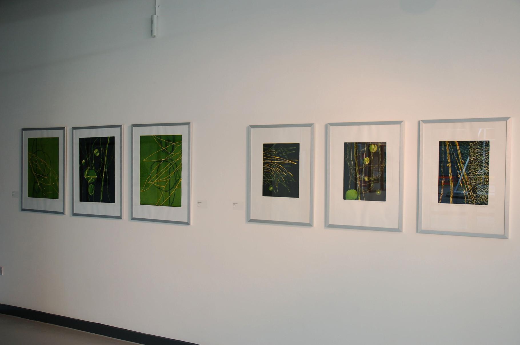 Farbholzschnitte Dschungel von Helmut Kesberg