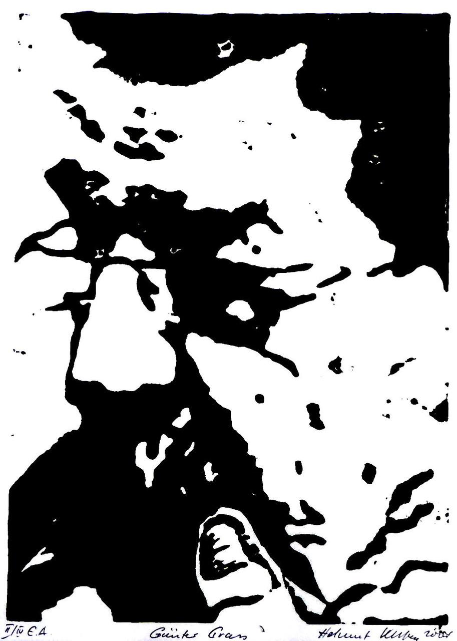 Günter Grass, 22 x 15 cm