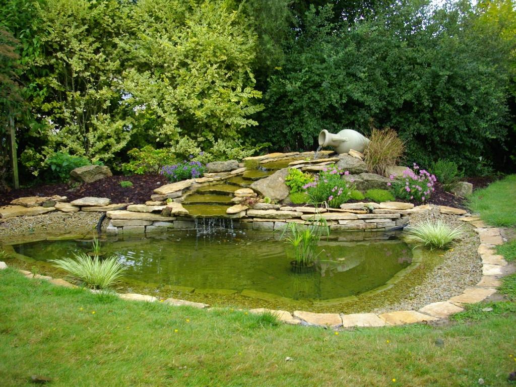 bassin avec cascade en pierre. perfect cascade with bassin avec