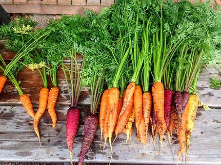 Gemüse in allen Varianten auf den Bauernmärkten in Teneriffa