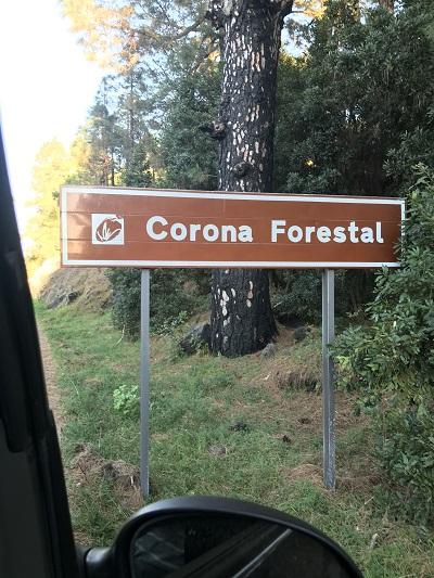 Corona auf Teneriffa