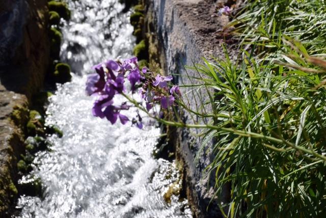 Wasserkanäle, die der Wasserversorgung auf Teneriffa dienen