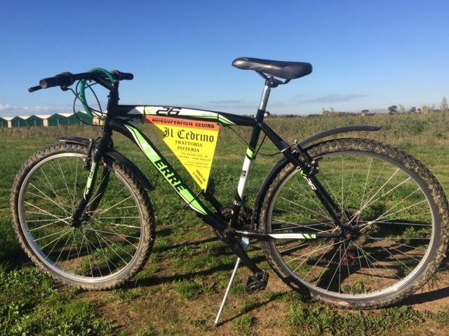 Bici-IlCedrino
