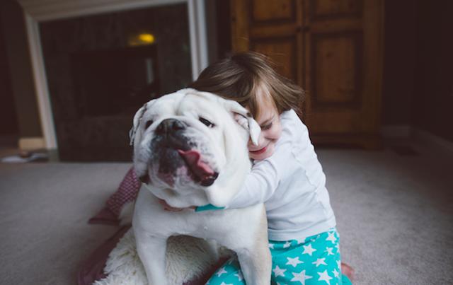 bebes, maternidad, fotografía, mascotas