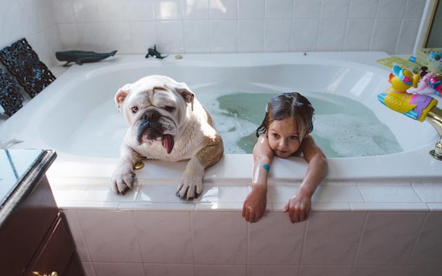 bebes, niños, maternidad, mascotas, fotografía