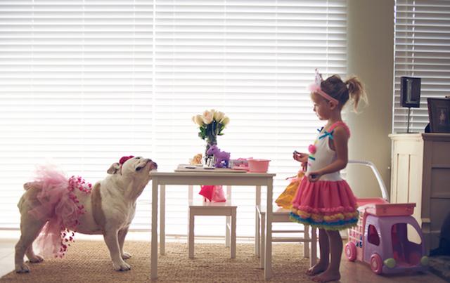 bebes, niños, mascotas, maternidad, fotografía, ines adiego