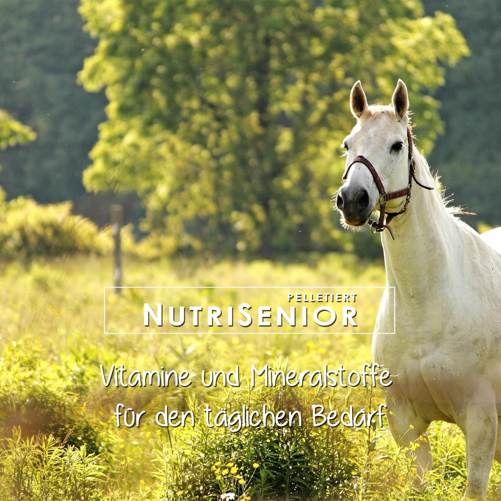 Vitamine und Mineralstoffe für Pferde ab dem 15. Altersjahr, mit Selen, Zink, Eisen, BetaCarotin, Magnesium, Calcium und vielen mehr
