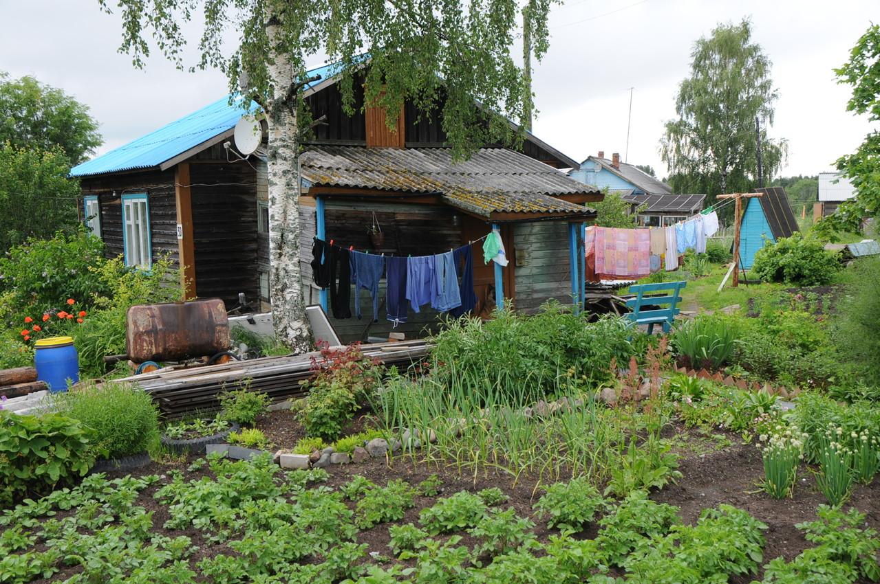 typisch karelischer Garten