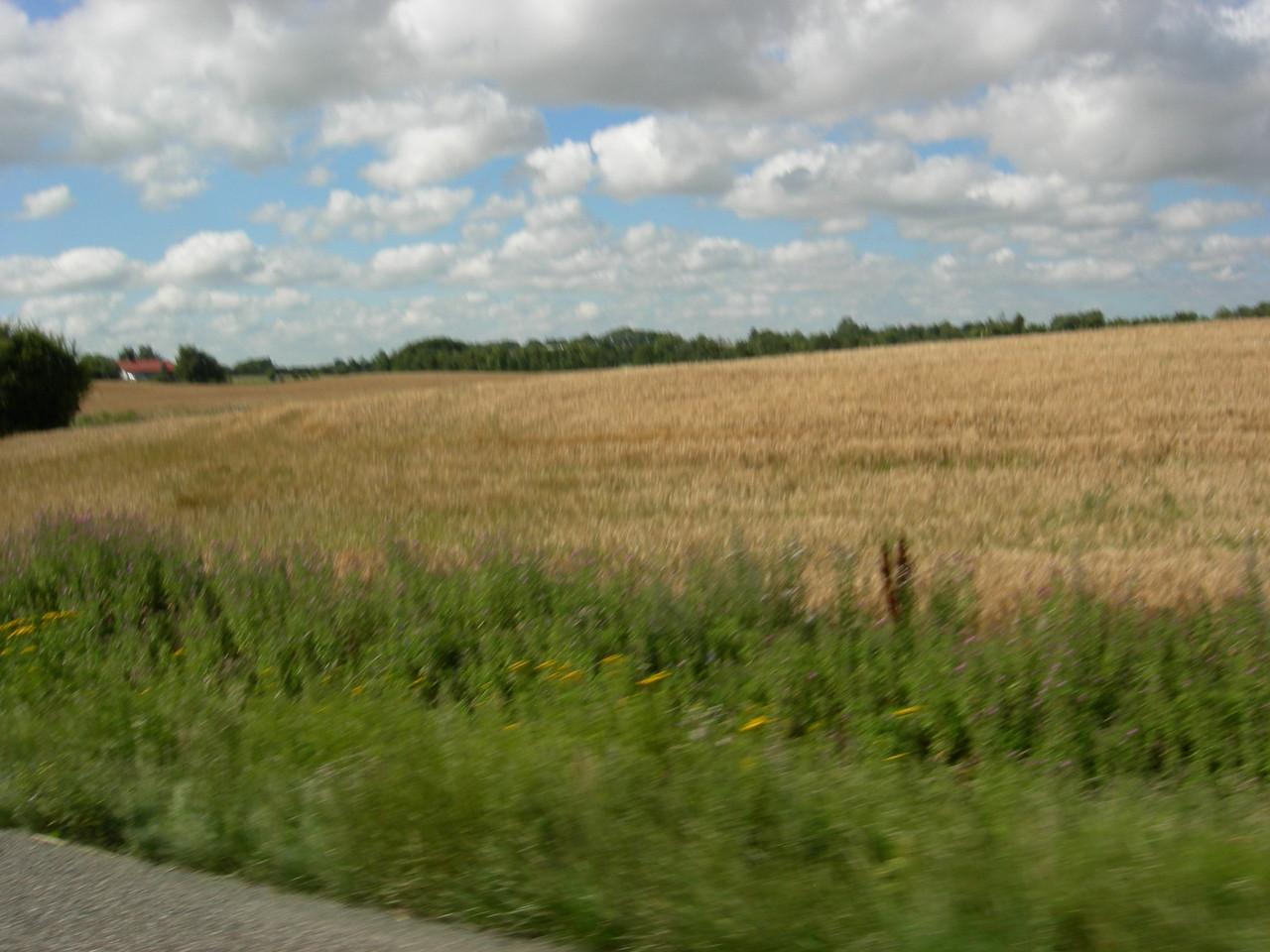 dänische Landwirtschaft