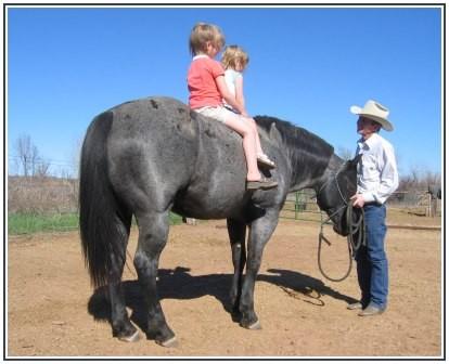 (c) by Birchfield Quarter Horses, TX