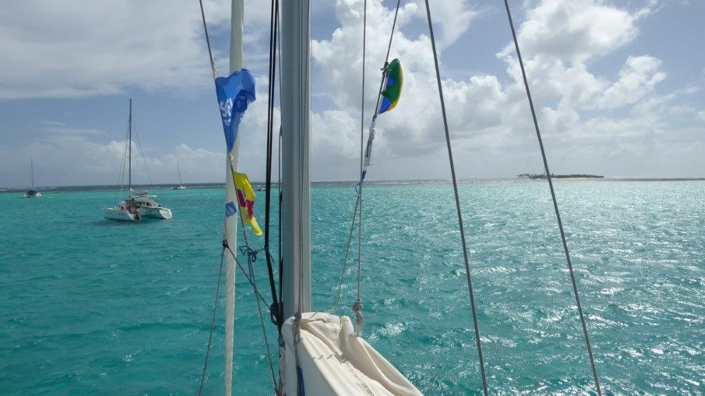 Perfekte Segelbedingungen - wenig Welle und viel Wind