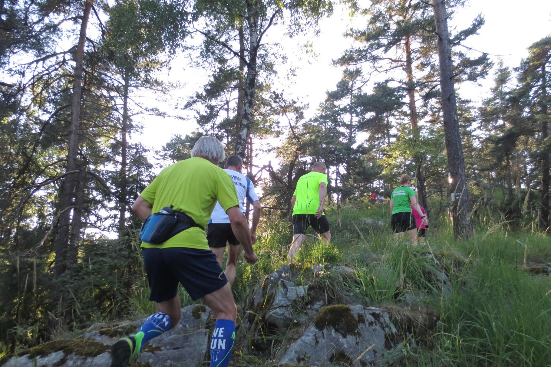 Kupferberg: Aufi geht's Richtung Peterlesstein....