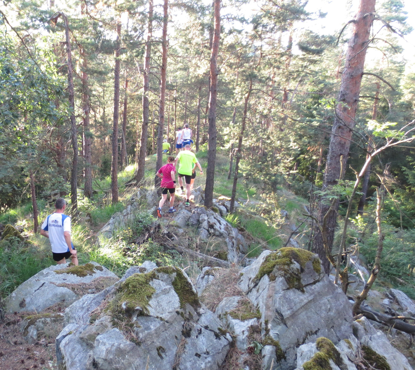 Kupferberg: Peterlesstein bergab
