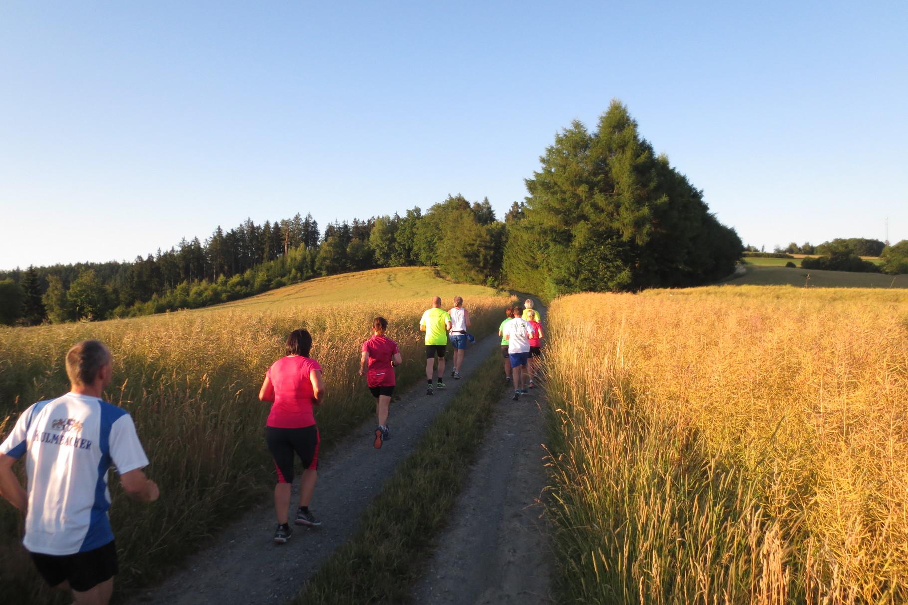 Kupferberg: Richtung Steinhöhe