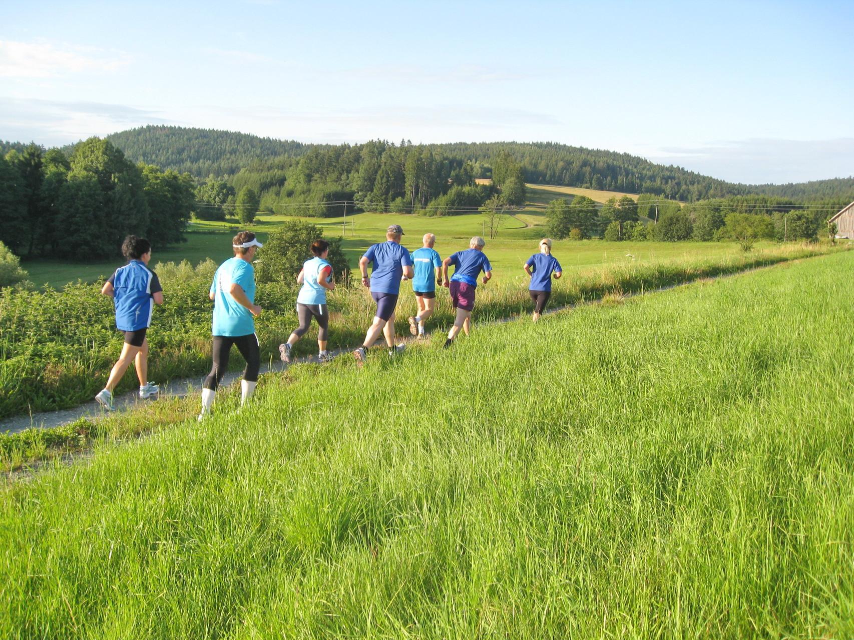 Lauf- / Walkingtreff