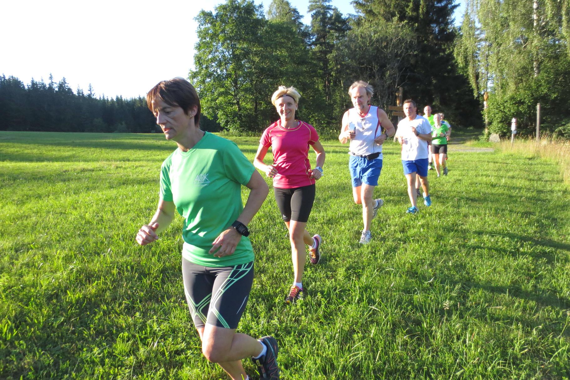 Kupferberg: Wiesenweg beim Spiegelweiher