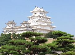 туры в Японию, визовая поддержка, услуги гида-переводчика, гид в Токио, гид в Японии, русскоязычный гид в Токио