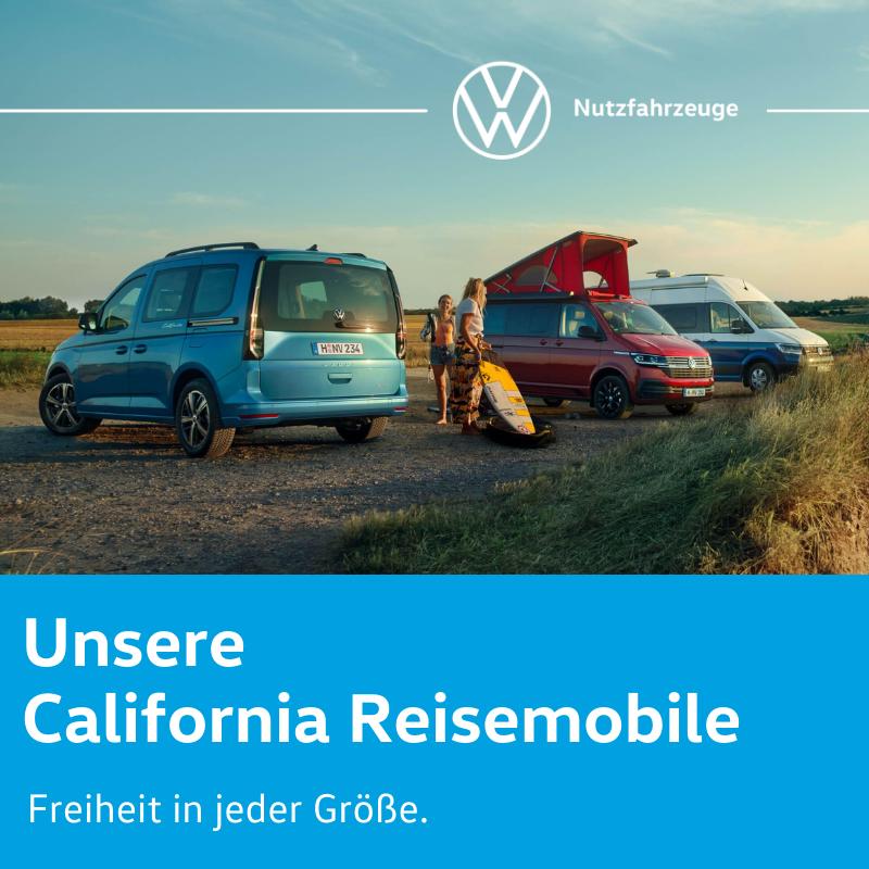 Unsere California Reisemobile