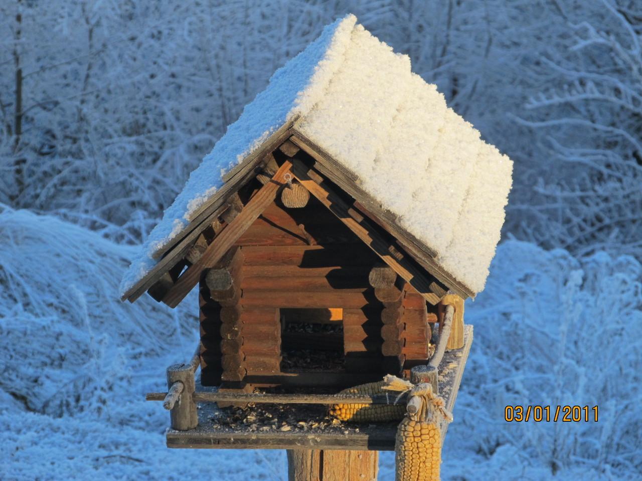 Das Vogelhaus vorm Fenster
