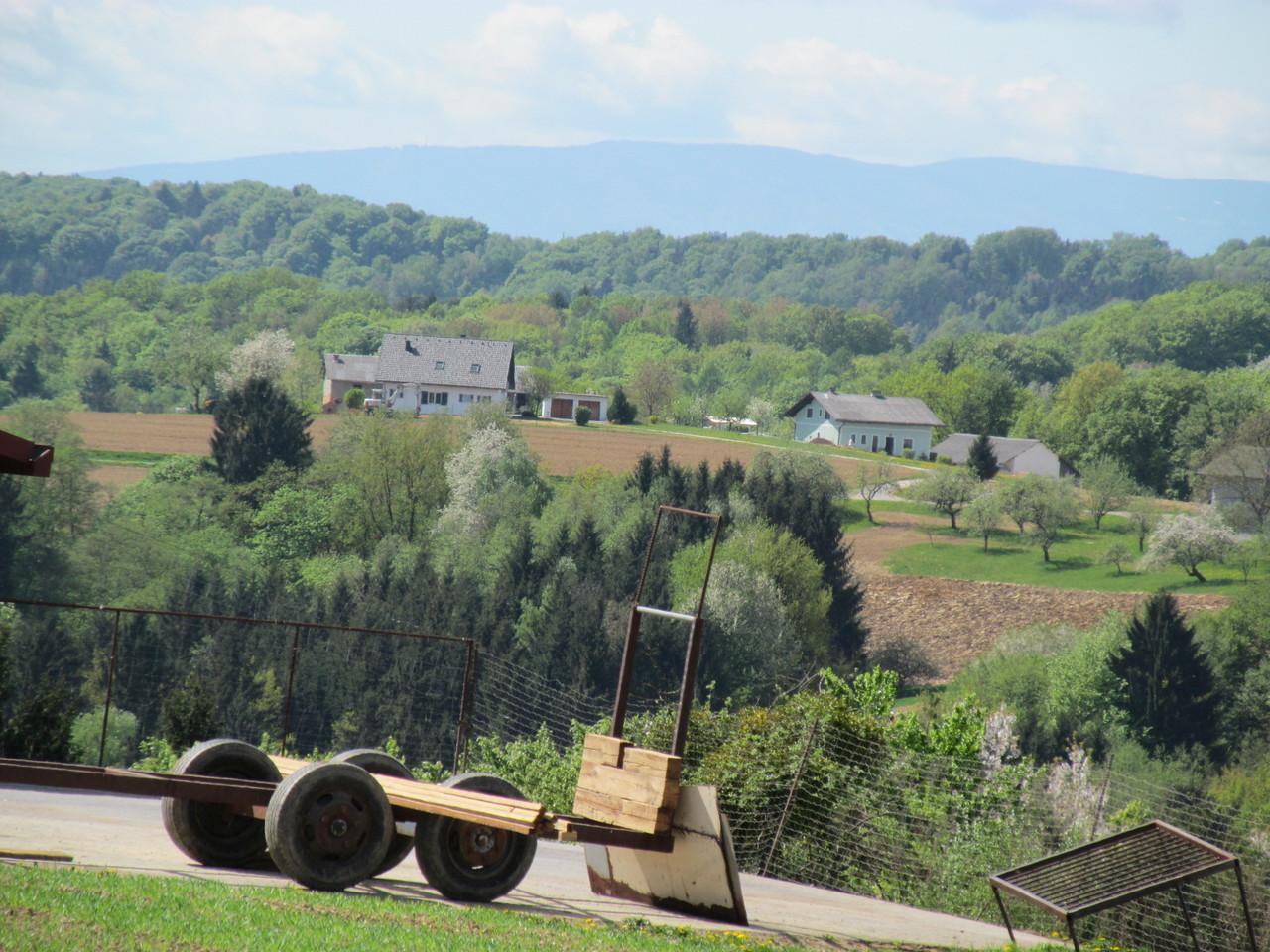"""Blick auf das SkiGebiet """"Mariborsko Pohorje""""  325 - 1.327m"""
