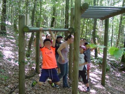 Activités dans les bois