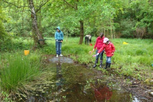 junge Forscher bei der Bestimmung der Wassergüte Foto: NABU/Jennifer Zängle