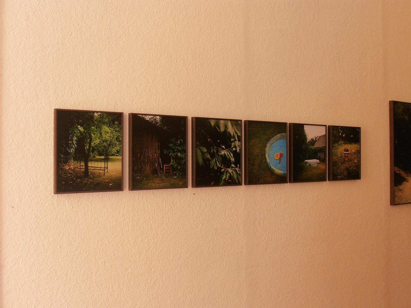 Выставка фотографии в Арле