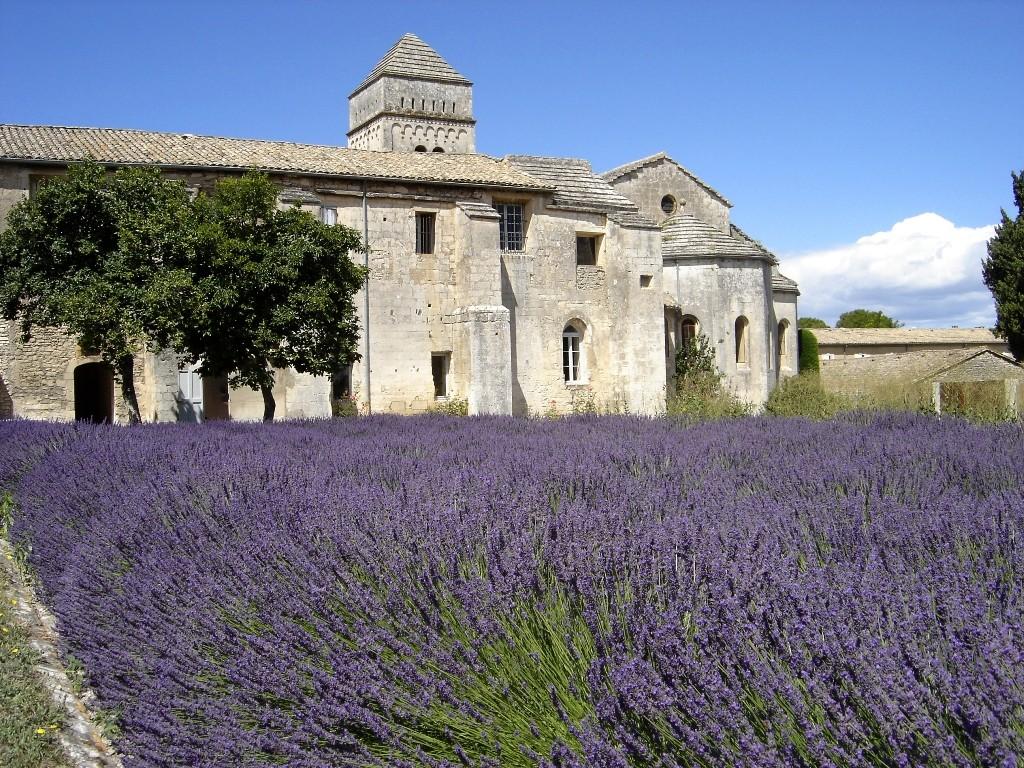 Монастырь Сен-Поль-де-Мозоль - лаванда