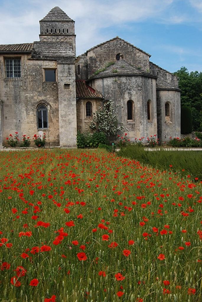 Монастырь Сен-Поль-де-Мозоль - маки