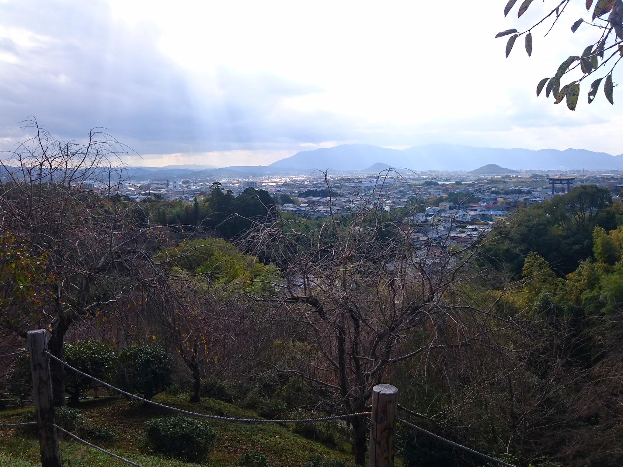 狭井神社展望台 大和三山