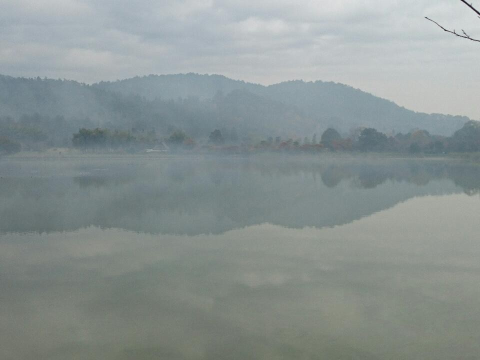 広沢の池  朝靄