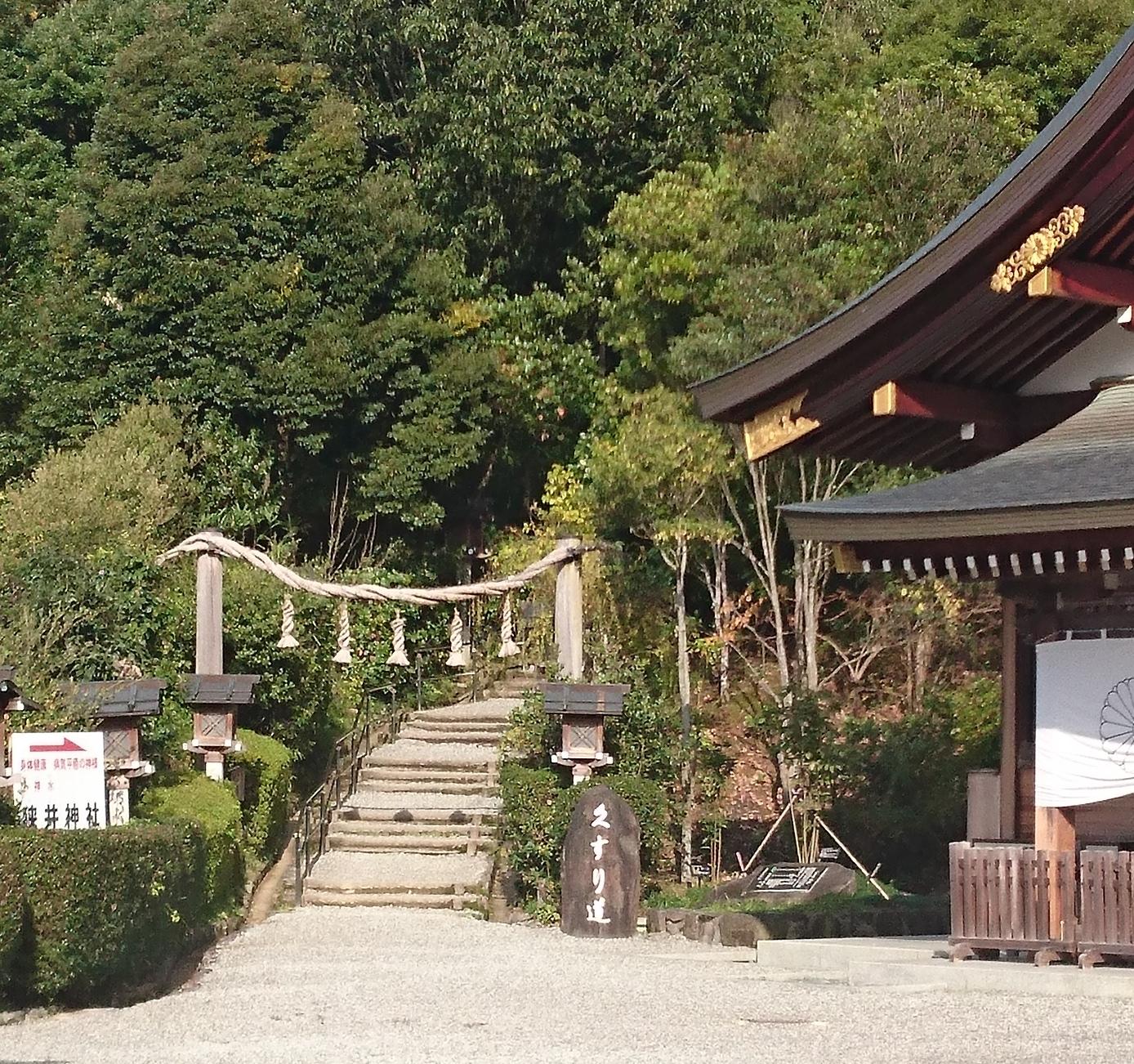狭井神社 薬の道