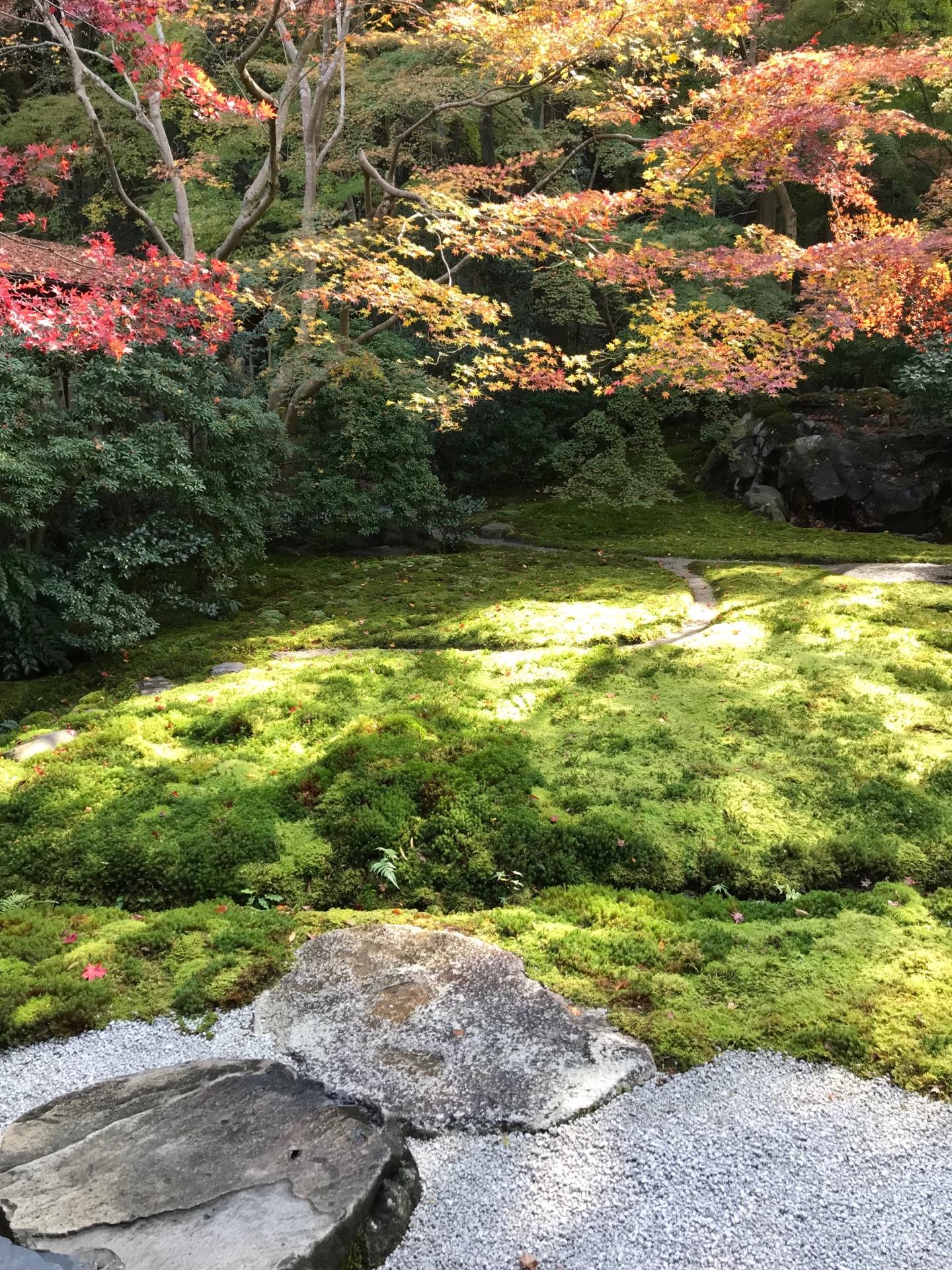 瑠璃の庭 瑠璃色に輝く浄土の世界を表現