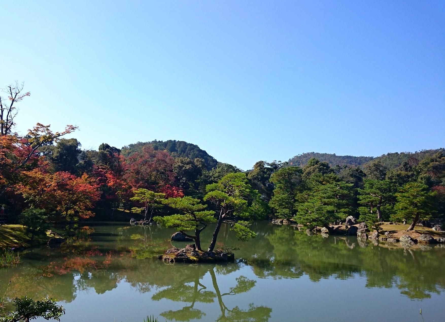金閣寺鏡湖池(きょうこち)の葦原島(あしはらじま)